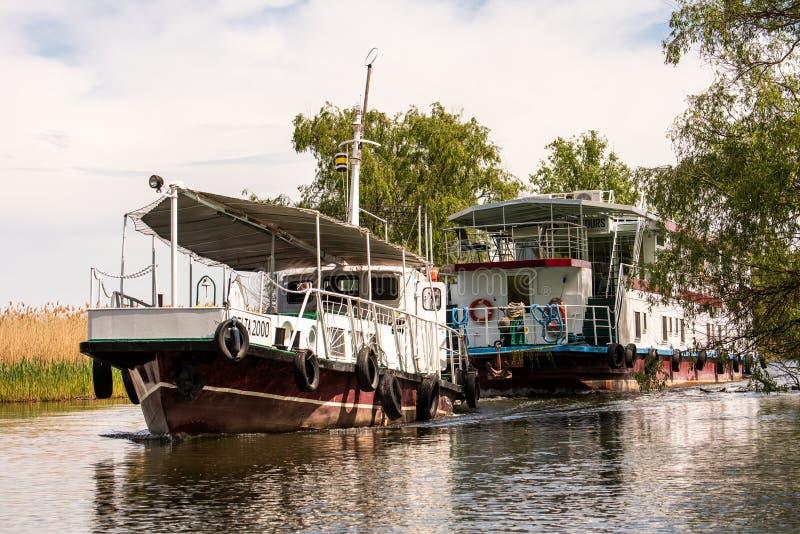 Viagem da aventura do hotel do barco no delta de Danúbio, ornitologia dos animais selvagens de Romênia imagens de stock royalty free