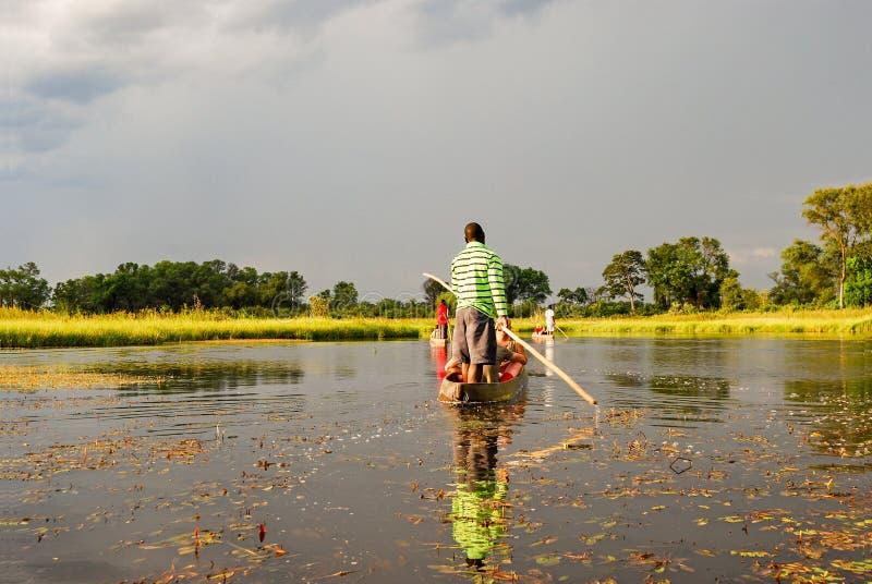 Viagem da canoa com o barco tradicional do mokoro no rio com o delta de Okavango perto de Maun, Botswana África fotos de stock
