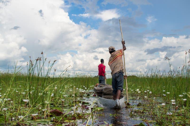 Viagem da canoa de Mokoro no delta de Okavango perto de Maun, Botswana imagens de stock