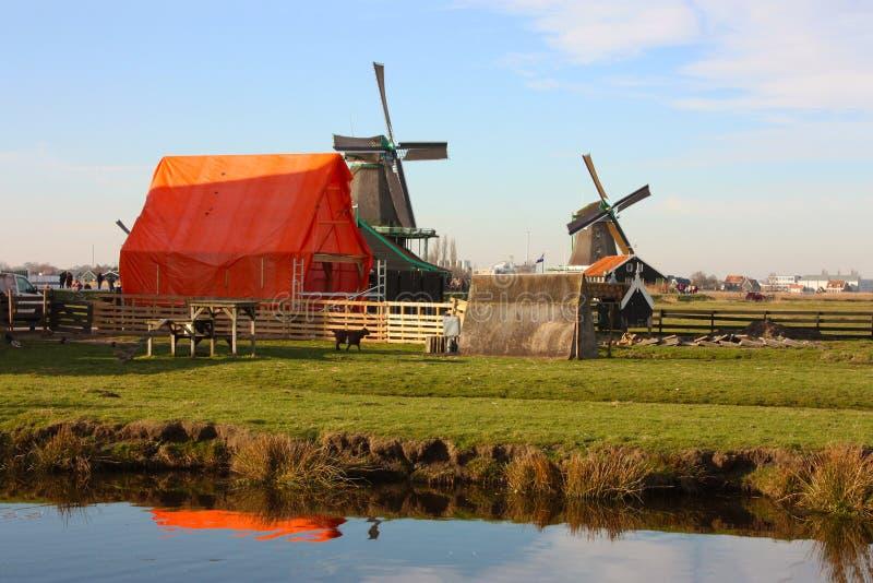 Viagem da mola a Zaanse Schans Os canais calmos, rios tranquilos fluem entre os montes Os moinhos de vento holandeses est?o como  fotos de stock royalty free