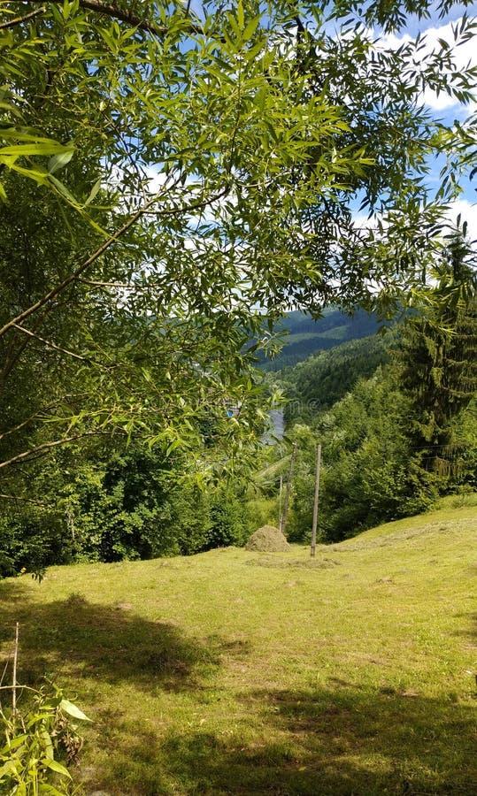 Viagem da montanha, verão da natureza fotografia de stock