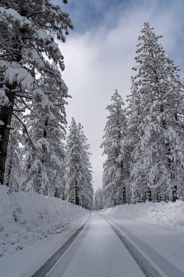 Viagem por estrada calma, fresca da neve fotografia de stock