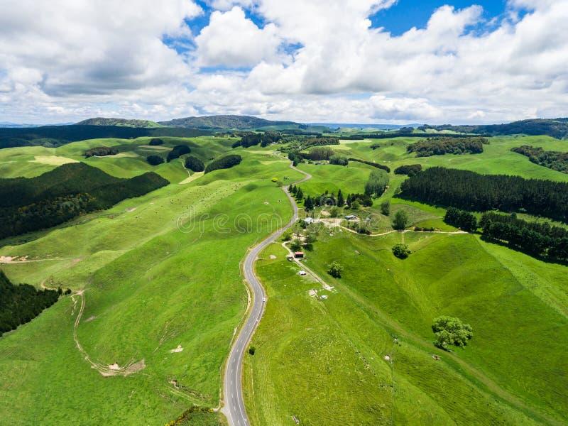 Viagem por estrada no monte do rolamento em Rotorua, Nova Zelândia fotos de stock