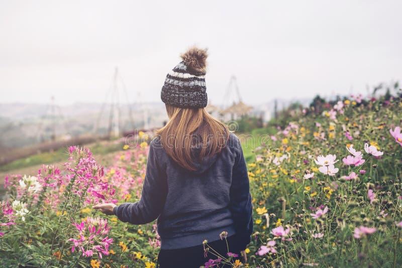 Viaggiatore della giovane donna che cammina nel giacimento di fiore immagine stock libera da diritti