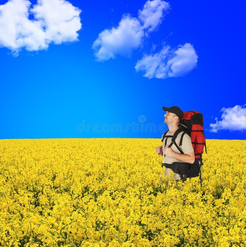 Viaggiatori con zaino e sacco a pelo felici nel giacimento di fiori fotografie stock