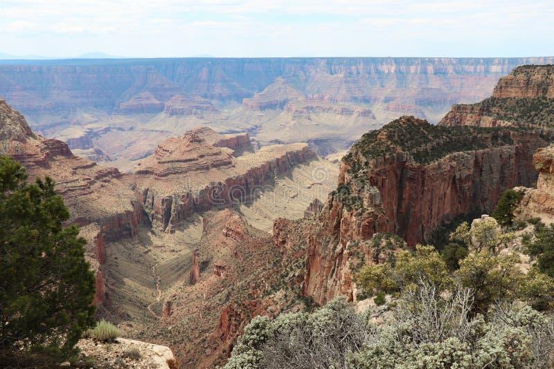 Viaggio al trono di Capo Royal Trail Grand Canyon fotografia stock