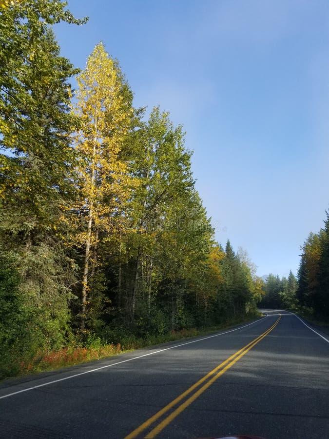 Viaggio da Seward a Anchorage fotografia stock
