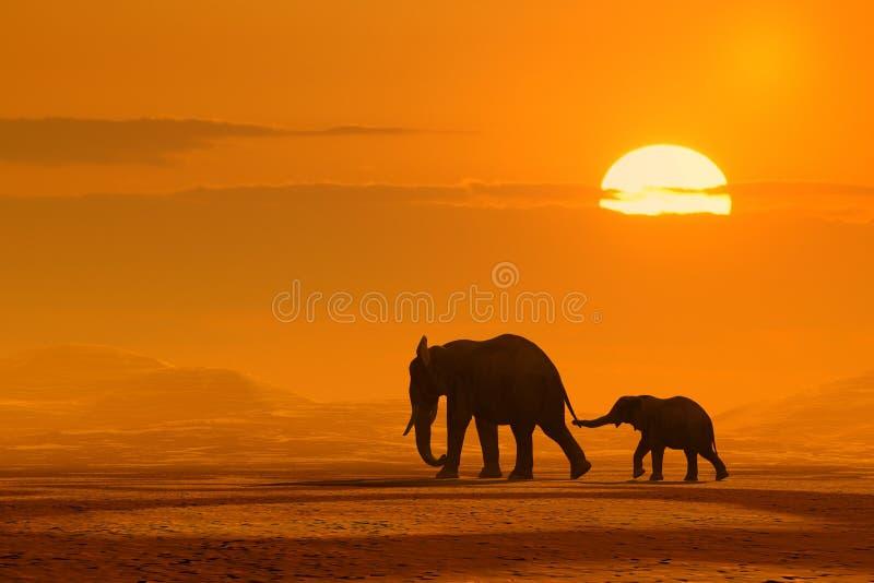 Viaggio degli elefanti fotografia stock
