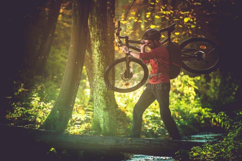 Viaggio della bici della regione selvaggia fotografie stock