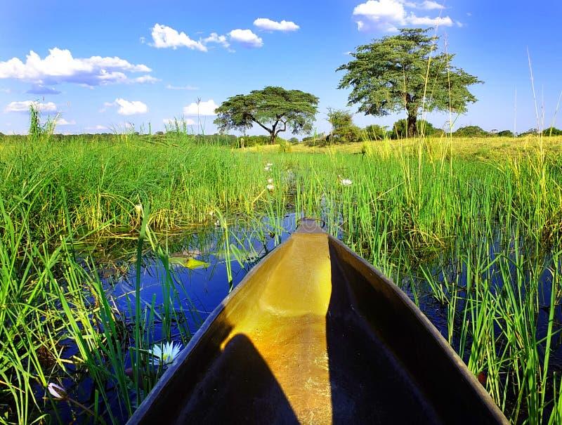Viaggio della canoa di Mokoro fotografia stock libera da diritti