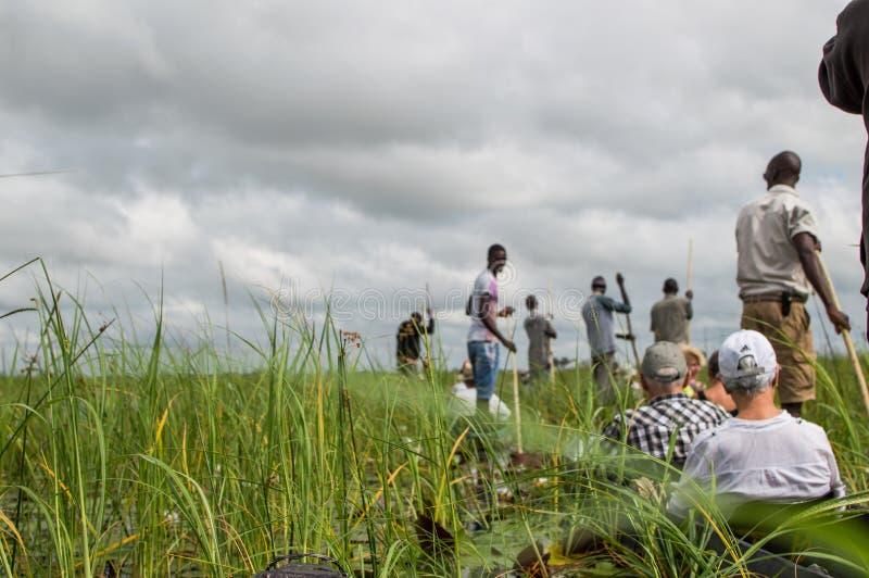 Viaggio della canoa di Mokoro nel delta di Okavango vicino a Maun, Botswana fotografie stock