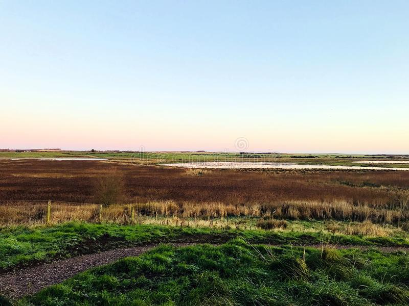Viaggio di bird-watching in Aberdeenshire immagini stock libere da diritti