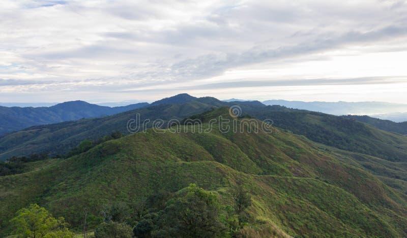 Viaggio di Phayao Tailandia del punto di vista del parco nazionale della montagna di Phu Langka del paesaggio con l'albero 2 fotografie stock