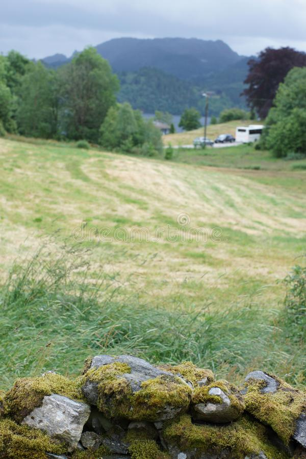 Viaggio in Norvegia, un campo di erba tagliata dietro una parete di pietra fotografie stock