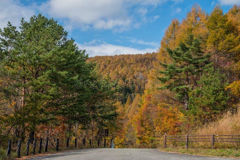 Viaggio stradale dell'orizzonte di Bandai Azuma nella stagione di autunno immagine stock
