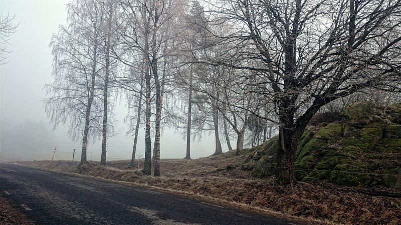 Viaggio stradale nebbioso fotografia stock