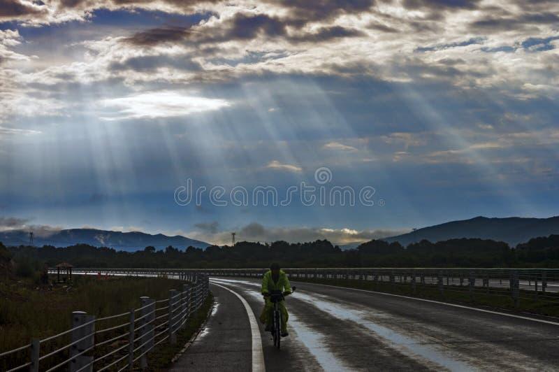 Viajante da bicicleta fotos de stock