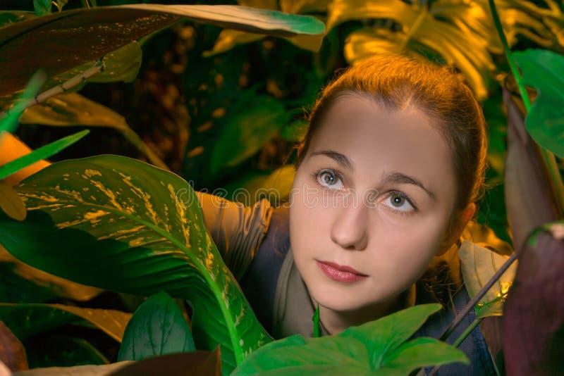 Viajante da mulher na floresta úmida fotos de stock