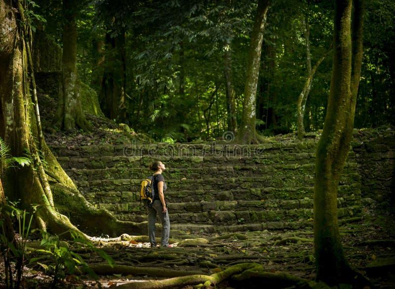 Viajante fêmea de solo na floresta fotografia de stock
