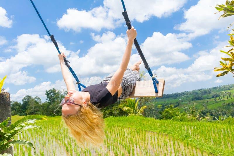 Viajante fêmea feliz que balança no balanço de madeira, apreciando férias de verão entre terraços verdes pristine do arroz foto de stock