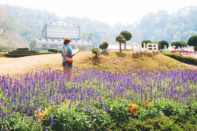 Viajante novo que olha no mapa, jardim botânico da rainha Sirikit, Chiang Mai fotografia de stock