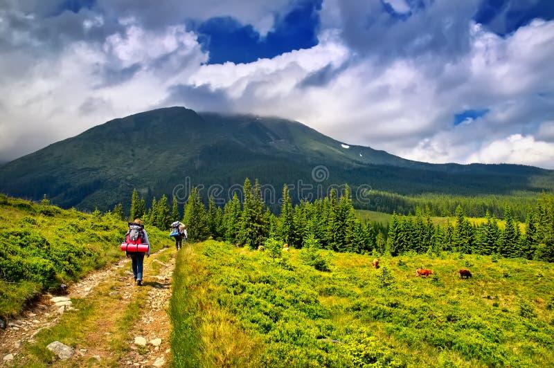 Viajantes nas montanhas fotos de stock