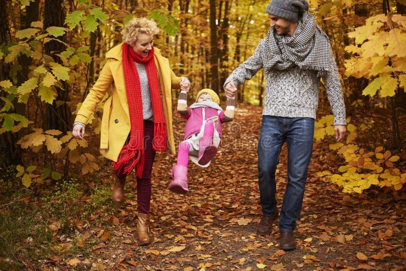 Viaje al bosque durante el otoño imagenes de archivo