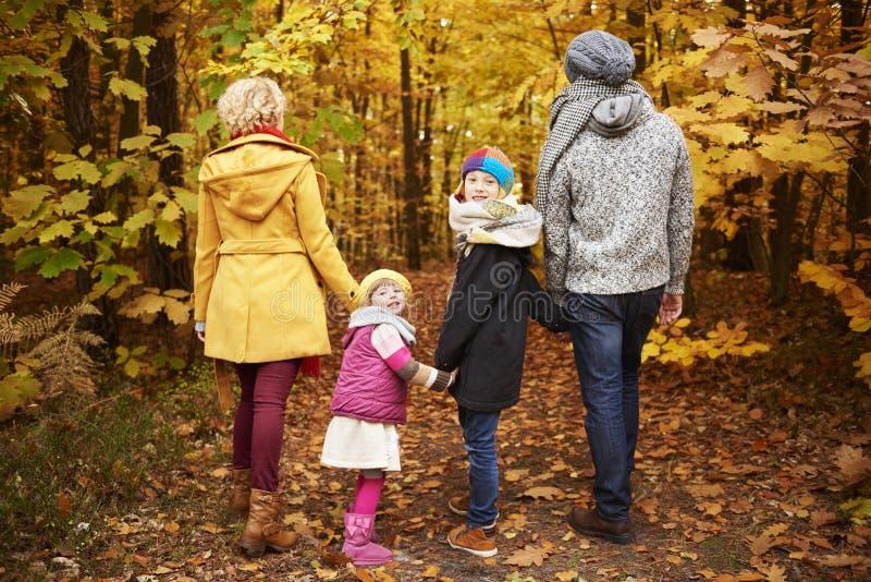 Viaje al bosque durante el otoño fotografía de archivo libre de regalías