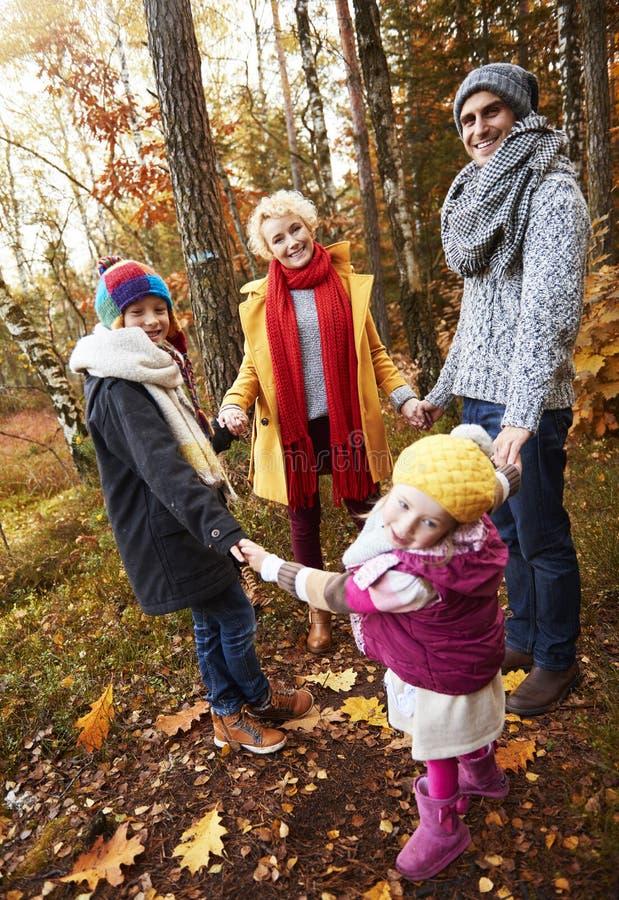 Viaje al bosque durante el otoño fotografía de archivo