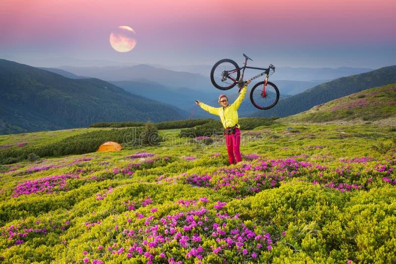 Viaje con la flor Cárpatos fotos de archivo