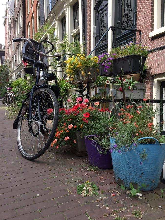 Viaje de la bici foto de archivo