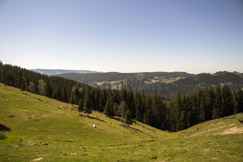 Viaje de la montaña en Vatra Dornei, Rumania imágenes de archivo libres de regalías