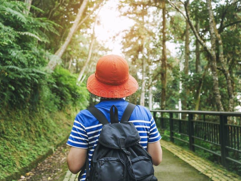 Viaje de la naturaleza de la aventura de la pasión por los viajes del paisaje del bosque del explorador del inconformista del via foto de archivo libre de regalías