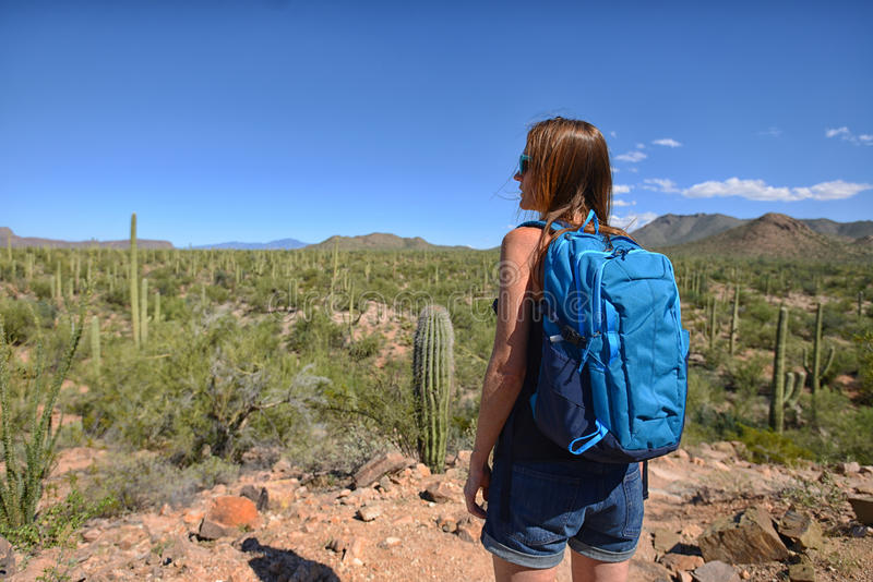 Viaje de la pasión por los viajes y del desierto imagen de archivo