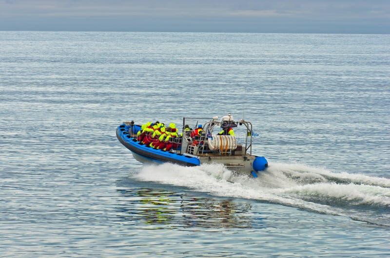 Viaje de observación de la ballena del barco rápido del zodiaco cerca de Husavik foto de archivo