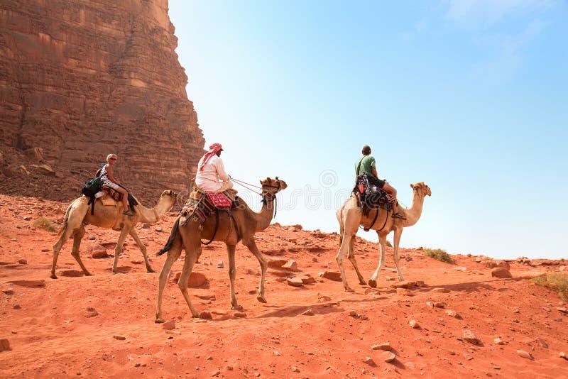 Viaje del camello en el desierto del ron del lecho de un río seco, Jordania foto de archivo libre de regalías