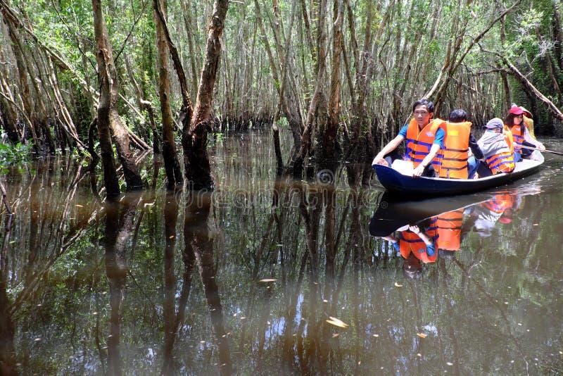 Viaje del verde de Eco en el delta del Mekong foto de archivo libre de regalías