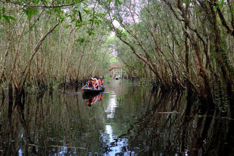 Viaje del verde de Eco en el delta del Mekong fotos de archivo
