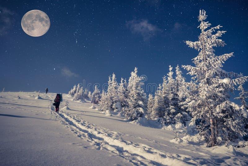 Viaje em montanhas do inverno na noite com estrelas e uma Lua cheia fotos de stock royalty free