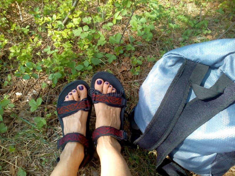 Viaje femenino de las piernas imagen de archivo