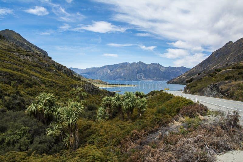 Viaje por carretera de Nueva Zelanda: Carretera del paso de Haast a Wanaka imagen de archivo