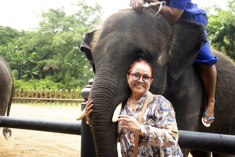 Viaje tailandés asiático de la mujer mayor y presentación para la foto de la toma con el elefante en el parque del jardín imagenes de archivo