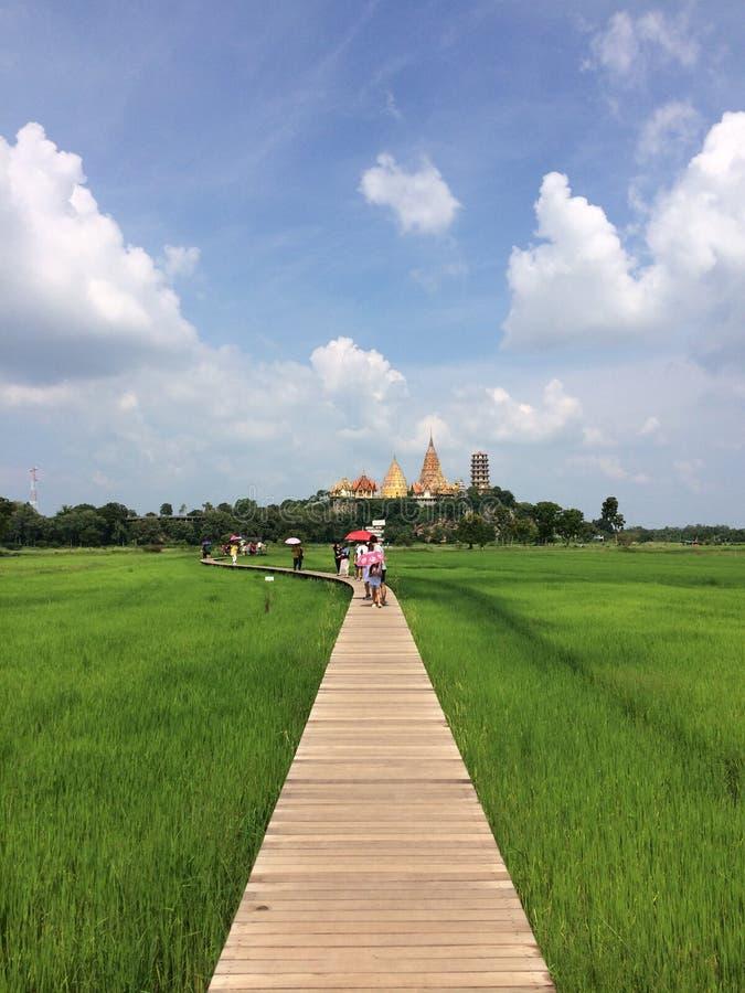 Viaje Wat Tham Sua Temple con los campos del arroz en la provincia de Kanchanaburi del café del meena de la cafetería del café, T imagen de archivo libre de regalías