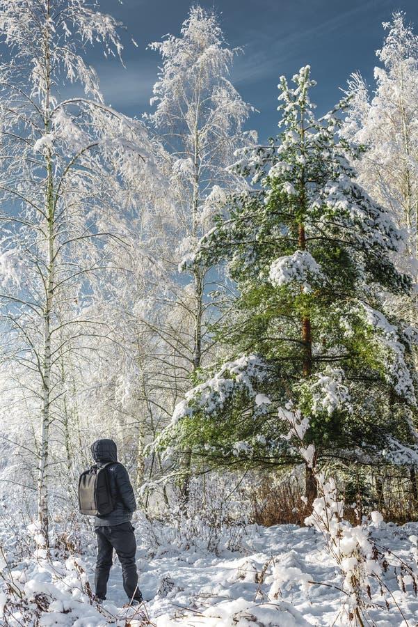 viajero en el bosque/el viajero del invierno con una mochila en los wi foto de archivo libre de regalías