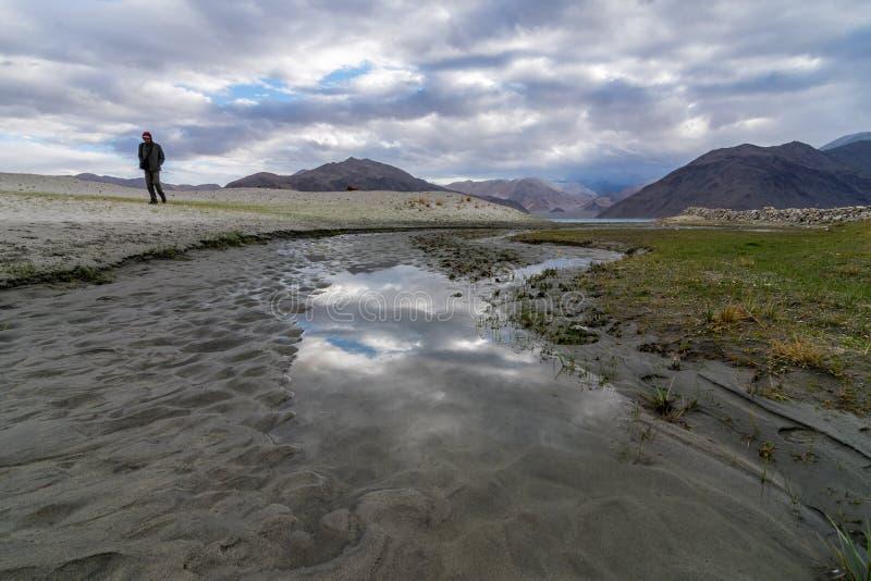 Viajero en el lago Pangong en Leh Ladakh, Jammu y Cachemira, la India fotografía de archivo