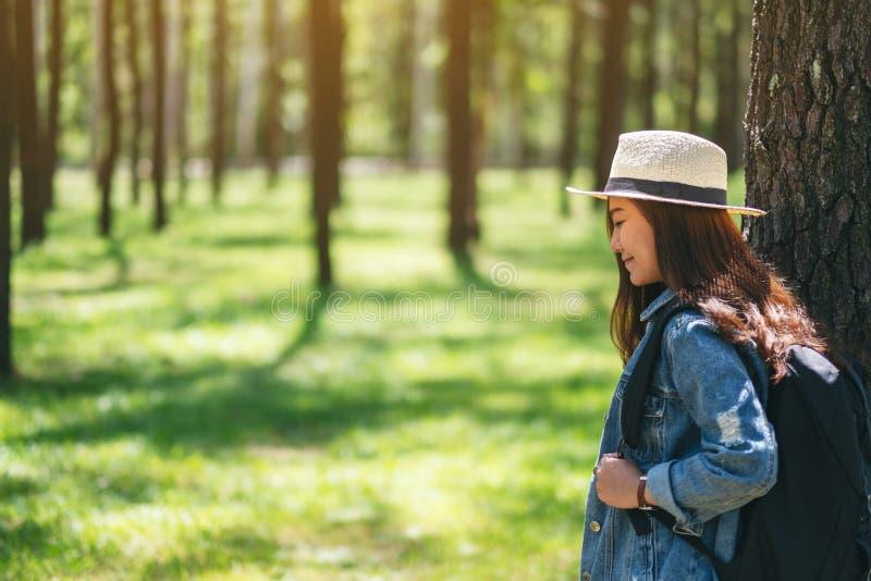 Viajero femenino con un sombrero y una mochila que miran en el bosque de un pino hermoso imágenes de archivo libres de regalías