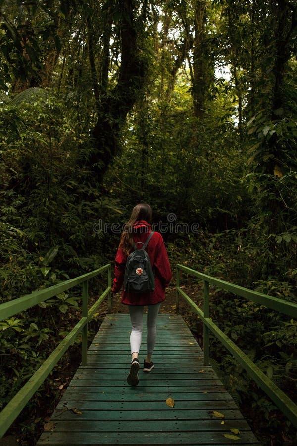 Viajero joven que camina en bosque de la nube de Monteverde con un backpak práctico de Fjallraven Kanken fotografía de archivo libre de regalías