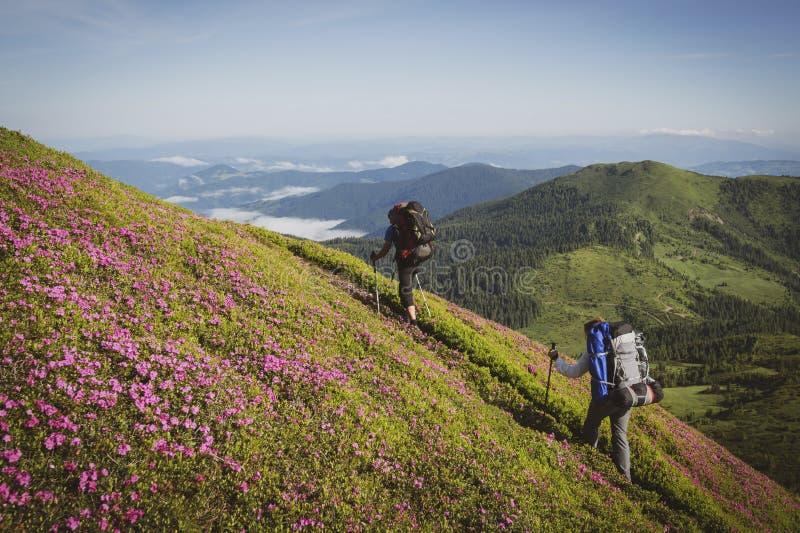 Viajeros, amigos que suben en el rastro de montaña imagenes de archivo