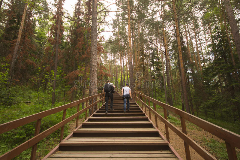 Viajeros en el bosque foto de archivo