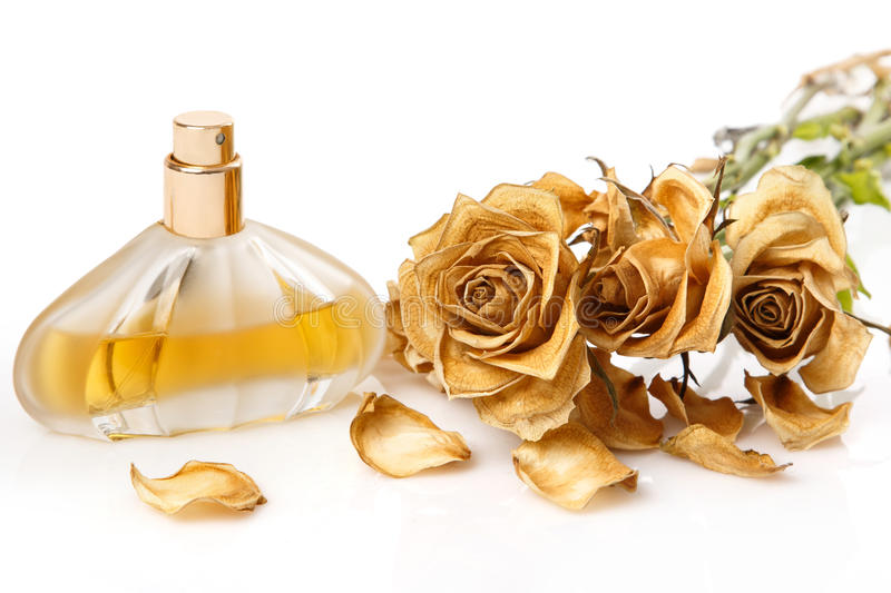 Vial of perfume and dry rose flower stock photos